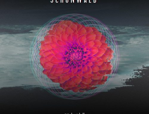 SCHONWALD – Night Idyll