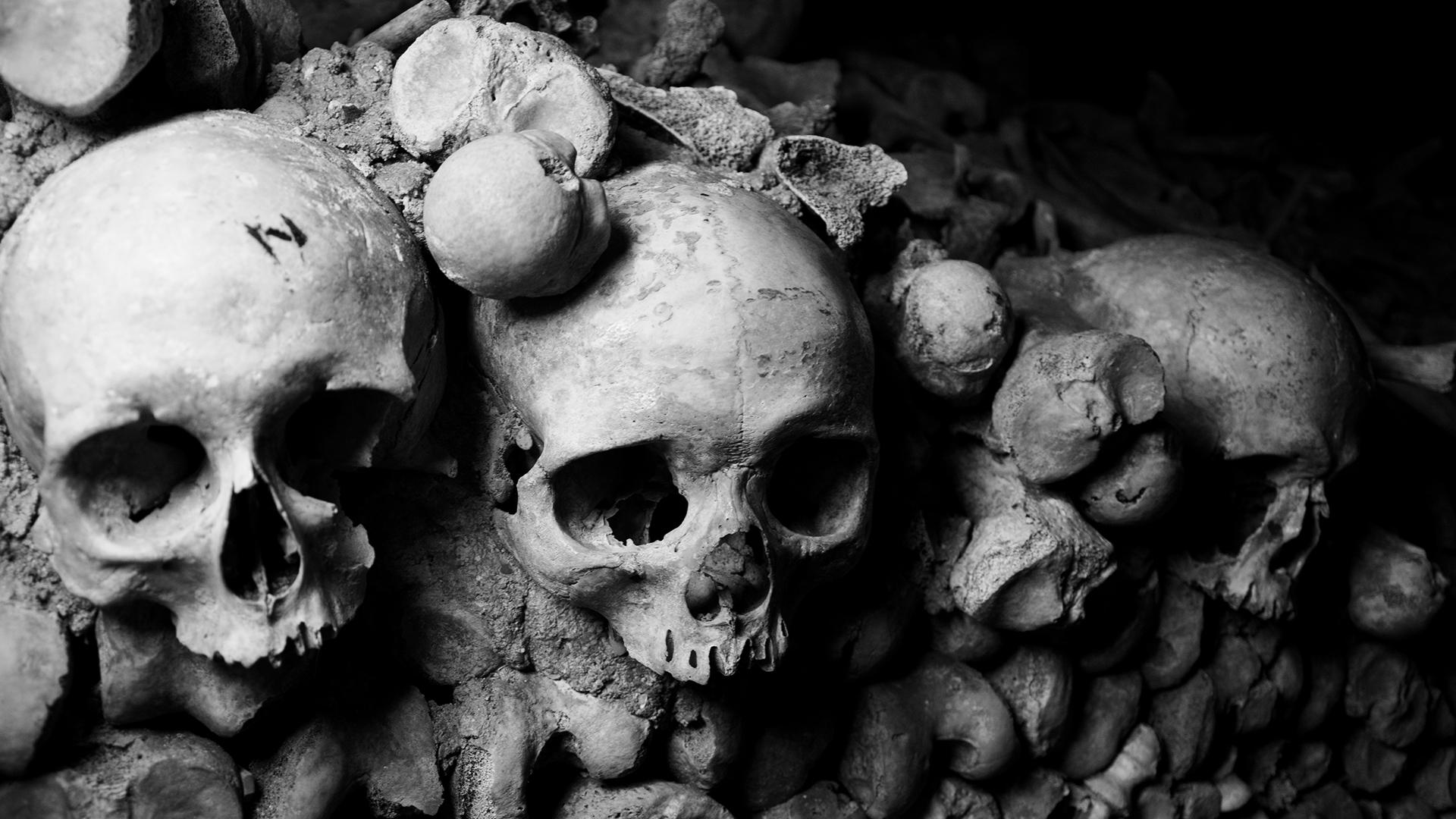skulls_by_dxd-d8mvtpq